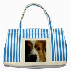 Red Border Collie Striped Blue Tote Bag