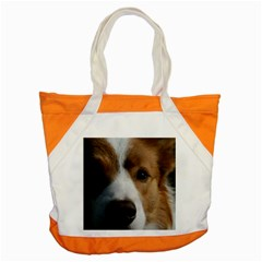 Red Border Collie Accent Tote Bag