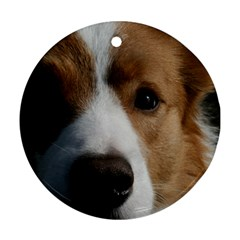 Red Border Collie Round Ornament (Two Sides)