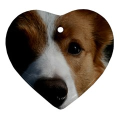 Red Border Collie Heart Ornament (Two Sides)