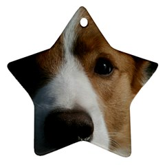 Red Border Collie Star Ornament (Two Sides)