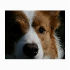 Red Border Collie Small Glasses Cloth (2-Side)