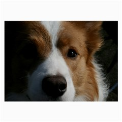 Red Border Collie Large Glasses Cloth