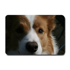Red Border Collie Small Doormat