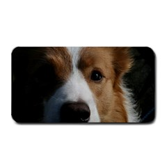 Red Border Collie Medium Bar Mats