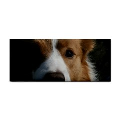 Red Border Collie Cosmetic Storage Cases