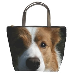 Red Border Collie Bucket Bags