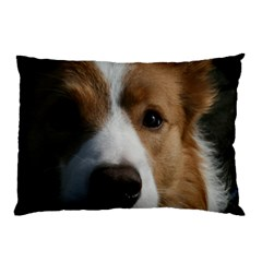 Red Border Collie Pillow Case