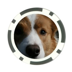 Red Border Collie Poker Chip Card Guard (10 pack)