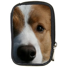 Red Border Collie Compact Camera Cases