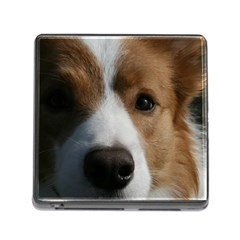 Red Border Collie Memory Card Reader (Square)