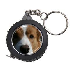Red Border Collie Measuring Tapes