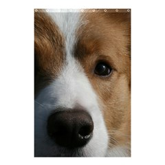 Red Border Collie Shower Curtain 48  x 72  (Small)