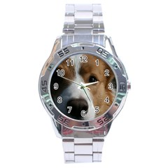 Red Border Collie Stainless Steel Analogue Watch