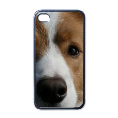 Red Border Collie Apple iPhone 4 Case (Black)