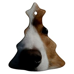 Red Border Collie Ornament (Christmas Tree)