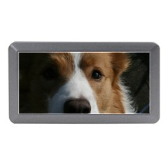 Red Border Collie Memory Card Reader (Mini)