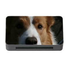 Red Border Collie Memory Card Reader with CF