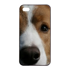 Red Border Collie Apple iPhone 4/4s Seamless Case (Black)