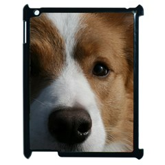 Red Border Collie Apple iPad 2 Case (Black)