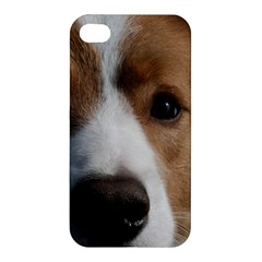 Red Border Collie Apple iPhone 4/4S Hardshell Case