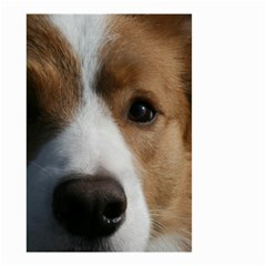 Red Border Collie Small Garden Flag (Two Sides)