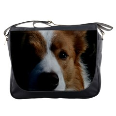 Red Border Collie Messenger Bags