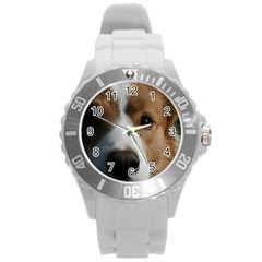 Red Border Collie Round Plastic Sport Watch (L)