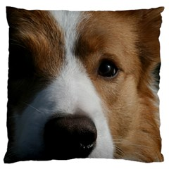 Red Border Collie Large Cushion Case (Two Sides)