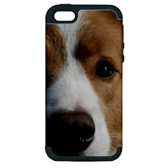 Red Border Collie Apple iPhone 5 Hardshell Case (PC+Silicone)