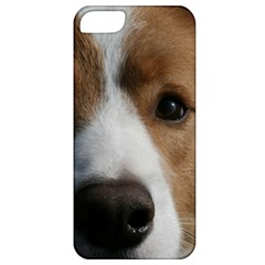Red Border Collie Apple iPhone 5 Classic Hardshell Case