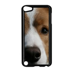 Red Border Collie Apple iPod Touch 5 Case (Black)