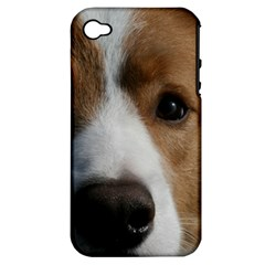 Red Border Collie Apple iPhone 4/4S Hardshell Case (PC+Silicone)