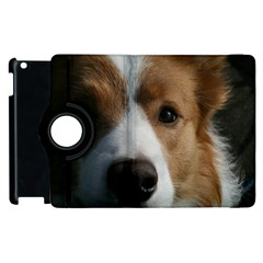 Red Border Collie Apple iPad 2 Flip 360 Case