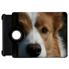 Red Border Collie Kindle Fire HD 7