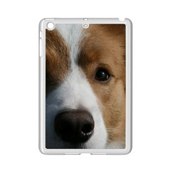 Red Border Collie iPad Mini 2 Enamel Coated Cases