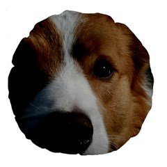 Red Border Collie Large 18  Premium Round Cushions
