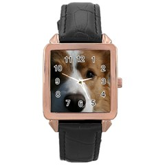 Red Border Collie Rose Gold Leather Watch