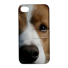 Red Border Collie Apple iPhone 4/4S Hardshell Case with Stand