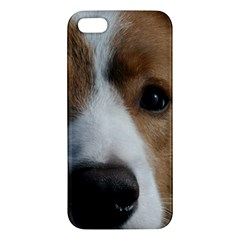Red Border Collie Apple iPhone 5 Premium Hardshell Case