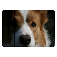 Red Border Collie Samsung Galaxy Tab 10.1  P7500 Flip Case
