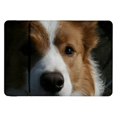 Red Border Collie Samsung Galaxy Tab 8.9  P7300 Flip Case