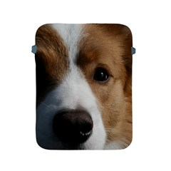 Red Border Collie Apple iPad 2/3/4 Protective Soft Cases