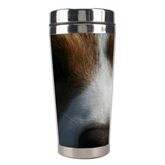 Red Border Collie Stainless Steel Travel Tumblers