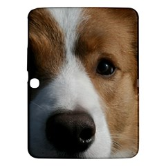 Red Border Collie Samsung Galaxy Tab 3 (10.1 ) P5200 Hardshell Case