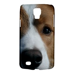 Red Border Collie Galaxy S4 Active