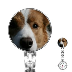 Red Border Collie Stainless Steel Nurses Watch