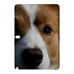 Red Border Collie Samsung Galaxy Tab Pro 10.1 Hardshell Case