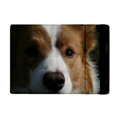 Red Border Collie iPad Mini 2 Flip Cases