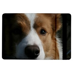 Red Border Collie iPad Air Flip
